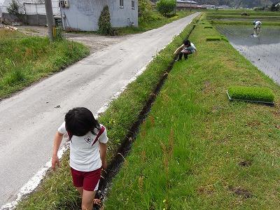 20090505mizuasobi.jpg