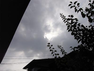 20090708syakoukabah4.jpg