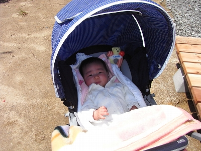 20110429kengakukai02.jpg